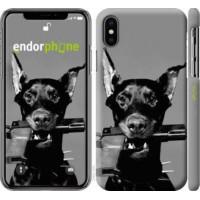 Чехол для iPhone X Доберман 2745m-1050