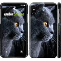 Чехол для iPhone X Красивый кот 3038m-1050