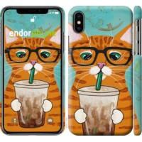 Чехол для iPhone X Зеленоглазый кот в очках 4054m-1050