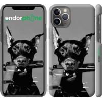 Чехол для iPhone 11 Pro Доберман 2745c-1788
