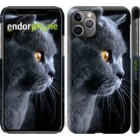 Чехол для iPhone 11 Pro Max Красивый кот 3038m-1723