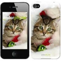 Чехол для iPhone 4 Новогодний котёнок в шапке 494c-15
