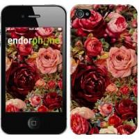 Чехол для iPhone 4s Цветущие розы 2701c-12