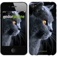 Чехол для iPhone 4 Красивый кот 3038c-15