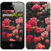 Чехол для iPhone 4 Куст с розами 2729c-15