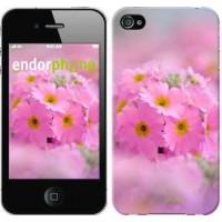 Чехол для iPhone 4 Розовая примула 508c-15