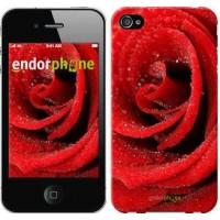 Чехол для iPhone 4 Красная роза 529c-15