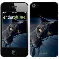 Чехол для iPhone 4s Дымчатый кот 825c-12