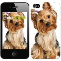Чехол для iPhone 4s Йоркширский терьер с хвостиком 930c-12