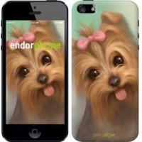 Чехол для iPhone SE Нарисованный йоркширский терьер 928c-214