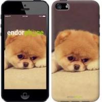 Чехол для iPhone 5 Boo 2 890c-18