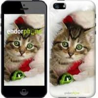 Чехол для iPhone SE Новогодний котёнок в шапке 494c-214