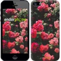 Чехол для iPhone SE Куст с розами 2729c-214