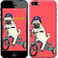 Чехол для iPhone 5 Мопс на велосипеде 3072c-18
