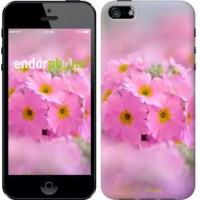 Чехол для iPhone 5s Розовая примула 508c-21