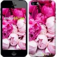 Чехол для iPhone 5 Розовые пионы 2747c-18