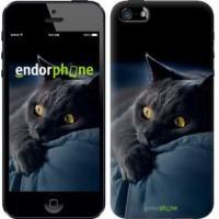 Чехол для iPhone SE Дымчатый кот 825c-214