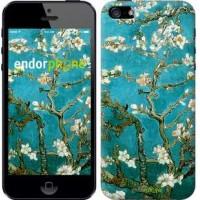Чехол для iPhone 5 Винсент Ван Гог. Сакура 841c-18