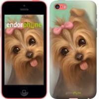 Чехол для iPhone 5c Нарисованный йоркширский терьер 928c-23