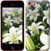 Чехол для iPhone 5c Белые лилии 2686c-23