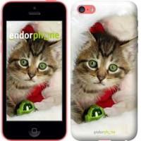 Чехол для iPhone 5c Новогодний котёнок в шапке 494c-23