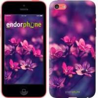 Чехол для iPhone 5c Пурпурные цветы 2719c-23