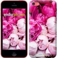 Чехол для iPhone 5c Розовые пионы 2747c-23