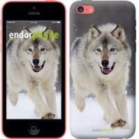 Чехол для iPhone 5c Бегущий волк 826c-23