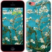 Чехол для iPhone 5c Винсент Ван Гог. Сакура 841c-23