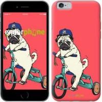 Чехол для iPhone 6s Мопс на велосипеде 3072c-90