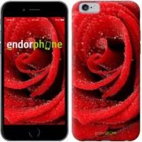 Чехол для iPhone 6 Красная роза 529c-45