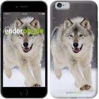 Чехол для iPhone 6 Бегущий волк 826c-45