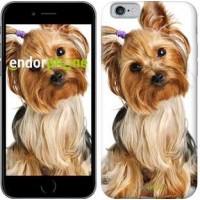 Чехол для iPhone 6s Йоркширский терьер с хвостиком 930c-90