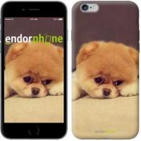 Чехол для iPhone 6s Plus Boo 2 890c-91