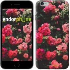 Чехол для iPhone 6s Plus Куст с розами 2729c-91