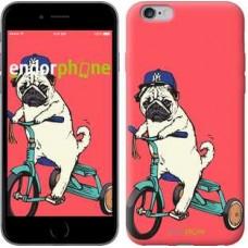 Чехол для iPhone 6s Plus Мопс на велосипеде 3072c-91