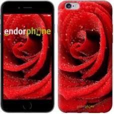 Чехол для iPhone 6s Plus Красная роза 529c-91