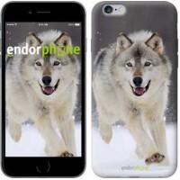Чехол для iPhone 6s Plus Бегущий волк 826c-91