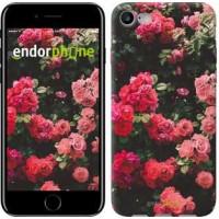 Чехол для iPhone 7 Куст с розами 2729c-336