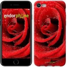 Чехол для iPhone 7 Красная роза 529c-336