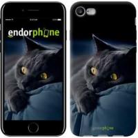 Чехол для iPhone 7 Дымчатый кот 825c-336
