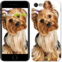 Чехол для iPhone 7 Йоркширский терьер с хвостиком 930c-336