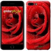 Чехол для iPhone 7 Plus Красная роза 529c-337