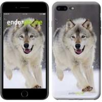 Чехол для iPhone 7 Plus Бегущий волк 826c-337