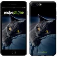 Чехол для iPhone 7 Plus Дымчатый кот 825c-337