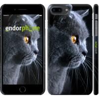 Чехол для iPhone 8 Plus Красивый кот 3038m-1032