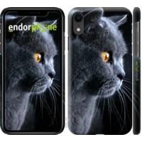 Чехол для iPhone XR Красивый кот 3038c-1560
