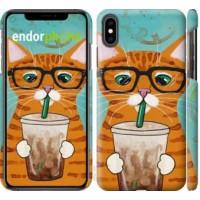 Чехол для iPhone XS Max Зеленоглазый кот в очках 4054m-1557