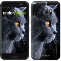 Чехол для HTC 10 Красивый кот 3038m-464