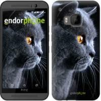 Чехол для HTC One M9 Красивый кот 3038u-129